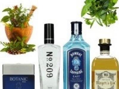- Kruidige gin -