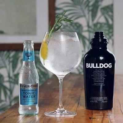Bulldog Gin / fles