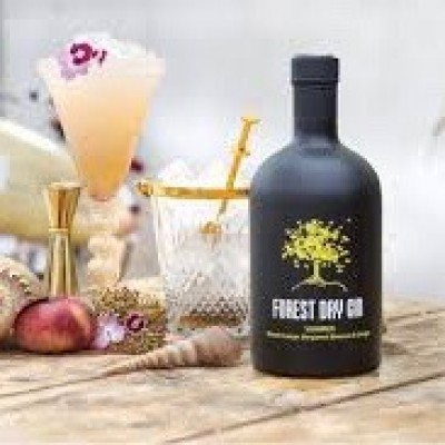 Forest Summer Gin / fles