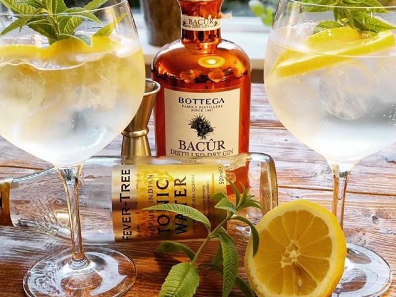 Bacur Gin / fles